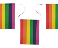 4189 Rainbow pride bunting